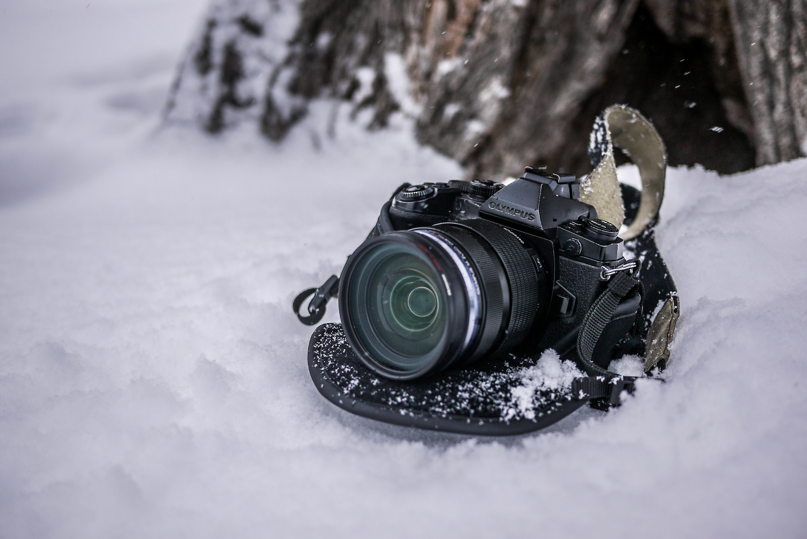 Adventure Photography: Olympus OM-D E-M1 Mirrorless Camera Long Term Review
